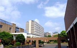 同济大学风景