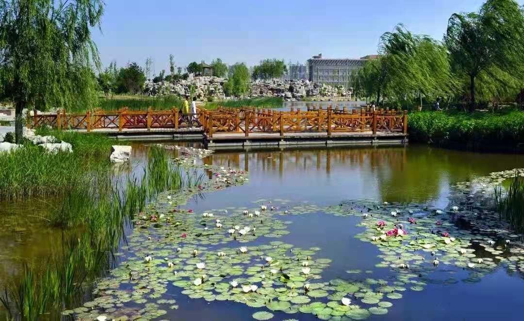 河北科技大学校园景色
